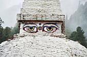 'Buddha Eye In Chendebji Chorten; Bhutan'