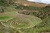 'Circular Incan Agricultural Terraces; Moray Peru'