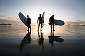 'Silhouette Of Three Surfers Carrying Surfboards; Chesterman Beach Tofino Vancouver Island British Columbia Canada'