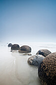 'Boulders In A Row In The Shallow Water At The Beach Along The Coast; Moeraki, South Island, New Zealand'