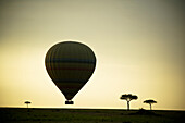 'Silhouette Of A Hot Air Balloon Just Off The Ground At Dusk; Masai Mara, Kenya'