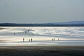 'Enniscrone, Killala Bay, County Sligo, Ireland; View Of Beach'