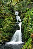 O' Sullivans Cascade, Killarney National Park, County Kerry, Ireland