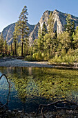Stream Running Through Kings Canyon National Park, California, United States Of America