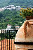 'Ravello, Campania, Italy; Balcony With Plant Pot'