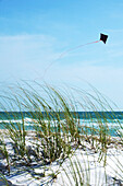 'Bradenton Beach, Florida, Usa; Kite Flying On The Beach'