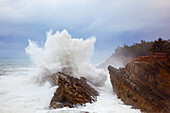 'Winter Storm At Shore Acres State Park Along The Oregon Coast; Oregon, United States of America'