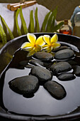 Spa Elements, Stones In Water In A Black Bowl With Plumeria Flowers, Towels, Plants And Bath Products In Background.