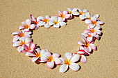 Pink And White Plumeria Blossoms Arranged In Heart On Sand.