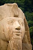 'Egyptian Statue; Memphis, Egypt'