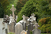 'Old Weathered Tombstones; Ireland'