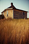 Tall Prairie Grass By Abandoned Building In Ghost Town Of Robsart, Saskatchewan, Canada