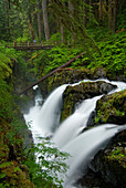 'Waterfall Plunges Into A Canyon In An Old-Growth Rainforest; Usa, Washington, Olympic National Park, Sol Duc River'