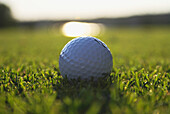 'Golf Ball On Organic Golf Course; Canada, Manitoba, Riding Mountain National Park'