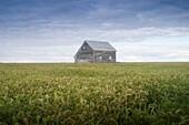 Old House, Manitoba, Canada