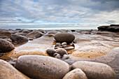 'Wet Rocks Along The Coast; South Shields, Tyne And Wear, England'