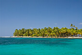 'Palm trees along the green water with blue sky;Arridup island san blas islands panama'