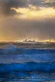 'Waves coming in at sunset;Kirra gold coast queensland australia'