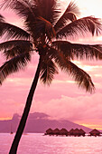 'Sunset over moorea from sofitel maeva beach resort near papeete;Tahiti nui society islands french polynesia south pacific'
