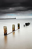 'Wooden posts in the tranquil water;Berwick northumberland england'