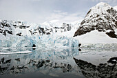 'Mountains and glaciers reflected in the water;Antarctica'