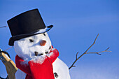 Closeup Of Snowman W/Black Top Hat & Red Scarf Interior Alaska Winter