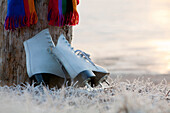 Close-Up Of Colorful Scarf And Figure Skates Leaning On Stump On Frosty Ground At Edge Of Frozen Lake, Kodiak, Southwest Alaska, Winter