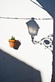'Shadow of a lamp and a potted plant mounted to a white wall;Mijas costa del sol andalusia spain'