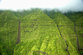 'Streams flowing down a lush green mountainside with low lying cloud;Hawaii united states of america'