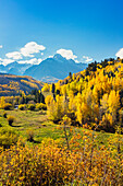 'Autumn coloured aspens and dramatic snowy mountains, dallas divide,Colorado, united states of america'