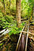 'Water flume along cherokee orchard road great smoky mountains national park;Tennessee united states of america'