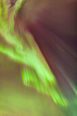 'A multi-coloured northern lights corona in the sky above the tony knowles coastal trail in winter;Anchorage alaska united states of america'