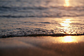 'Sunlight reflecting off the water and wet sand at sunset;Honolulu hawaii united states of america'