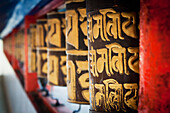 'Decorative wall in red and gold;Gangtok sikkim india'