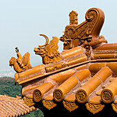 Ornate detail on a roof