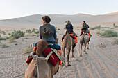 'Four people riding camels on a desert landscape;Jiuquan gansu china'