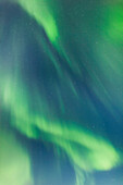 'Northern Lights In The Sky Above The Chena Lakes Recreation Area; Fairbanks, Alaska, United States Of America'
