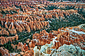 'Bryce Canyon National Park; Utah, United States Of America'