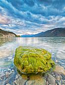 'Algae covered rock in Muncho Lake; British Columbia, Canada'