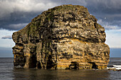 'Birds landing on a large, rugged rock formation in the water; South Shields, Tyne and Wear, England'