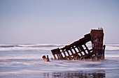 'Surf washes over the skeleton of the Peter Iredale; Oregon, United States of America'