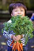 'Young boy holding a bunch of organic carrots; Montreal, Quebec, Canada'