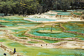 'Colourful pools formed by calcite deposits; Huanglong, Sichuan province, China'