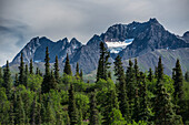 Hanging glacier and Alaska Range with split rail fence & firewed at Rainy Pass Lodge summer.