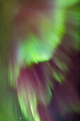 'Northern Lights in the sky above the Tony Knowles Coastal Trail, Anchorage Coastal Refuge; Anchorage, Alaska, United States of America'