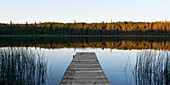 'A wooden dock leading out to a tranquil lake at sunset in Riding Mountain National Park; Manitoba, Canada'