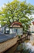 Leine Canal, Papendiek, G. Heyne Ufer, Goettingen, Lower Saxony, Germany