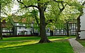 Church Square, Dassel, Lower Saxony, Germany