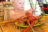 Little boy eating lobster, seafood, fresh from the sea, bamboo furniture, table, beach restaurant, boy 3 years old, blond, holiday, family travel in Asia, parental leave, German, European, MR, Gili Air, Gili Inseln, Lombok, Indonesia
