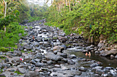 Father and son taking a bath in a river, riverbed, rocks, stones, local Balinese taking baths here, trees, local custom, intercultural, boy 3 years old, family on holiday, family travel in Asia, parental leave, Sidemen, Bali, Indonesia